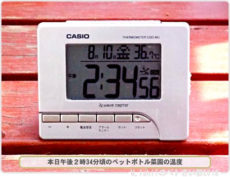 ガリガリ君52-1