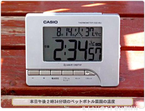 ガリガリ君53-1