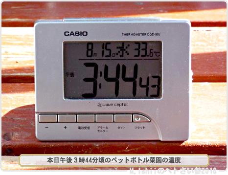 ガリガリ君54-1