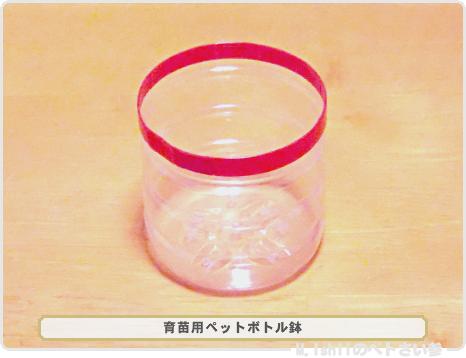 ペトさい(ペットボトル鉢)14