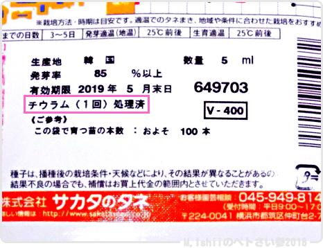 ペトさい(ころっ娘)02