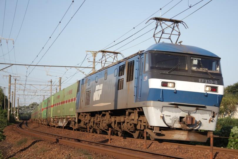 EF210-8IMG_6626-3.jpg