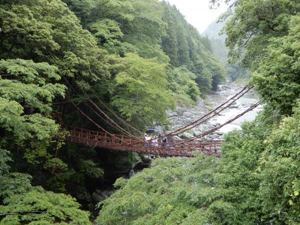 祖谷のかずら橋