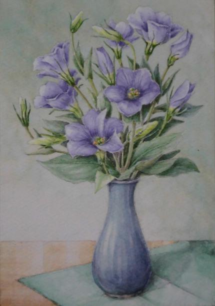 トルコキキョウ 1808