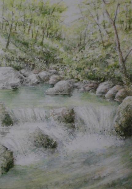 夏の渓流 1808
