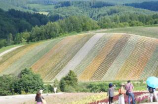 四季彩の丘3
