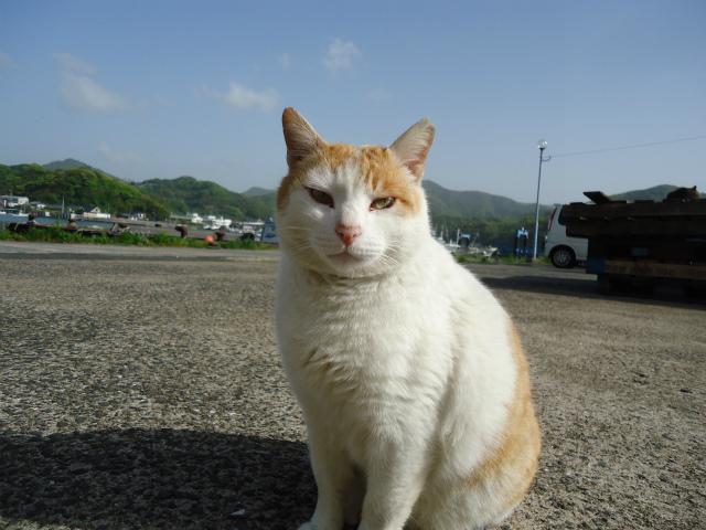 chakichi0037.jpg