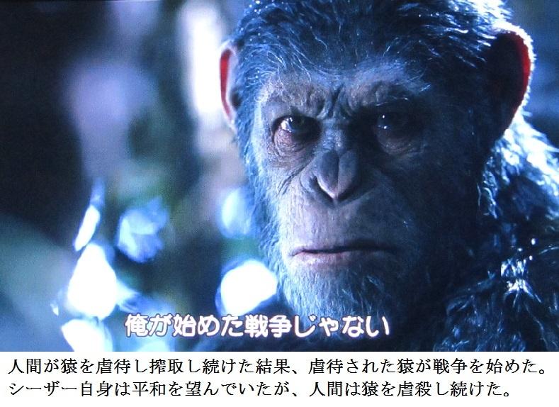 ape g