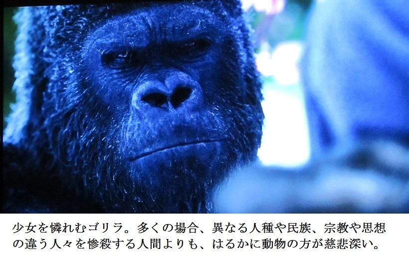 ape p
