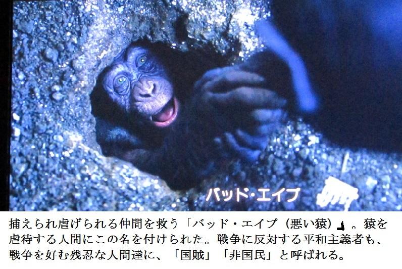 ape s