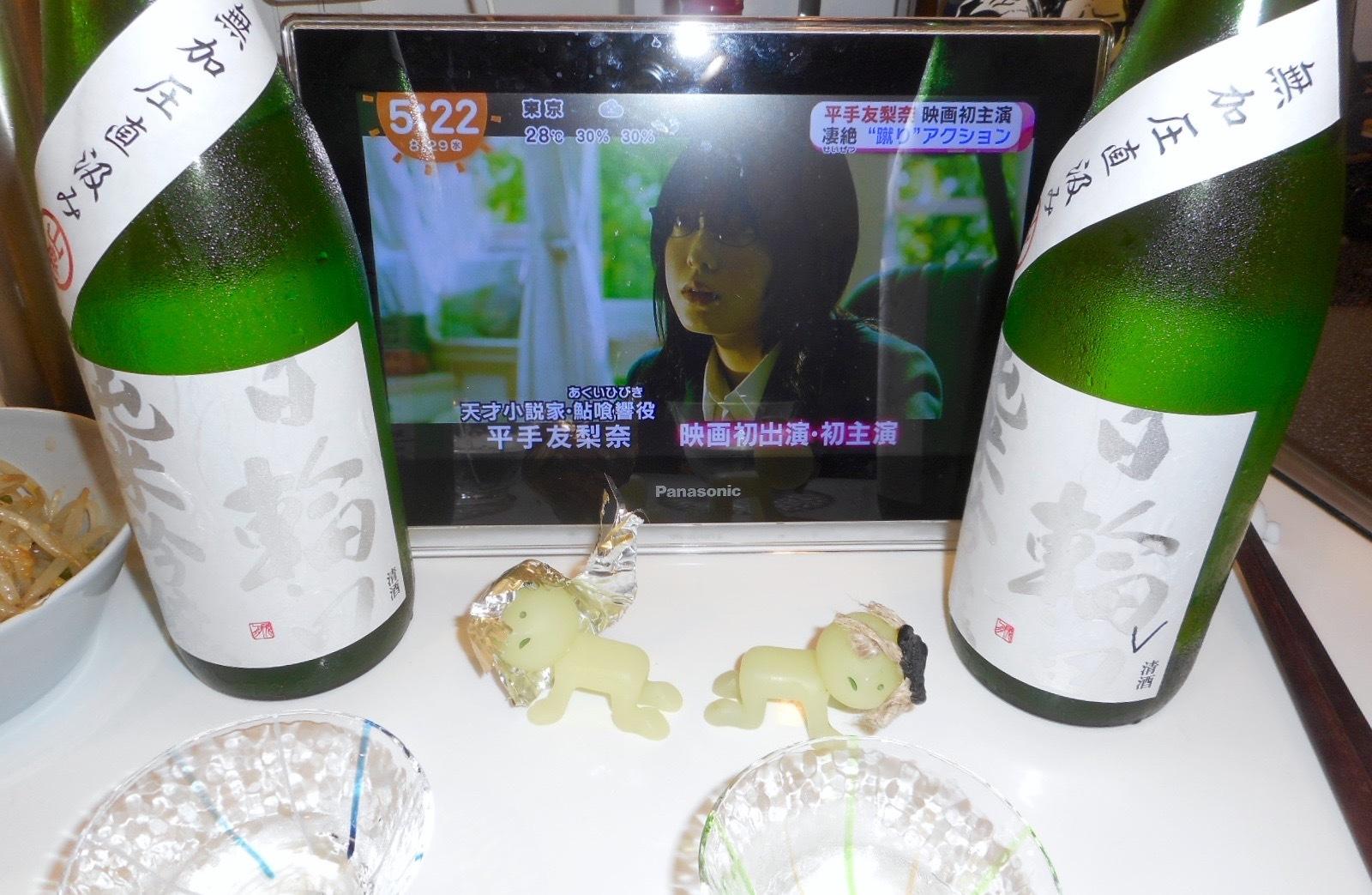 hiwata_mukaatsu28by2_4.jpg
