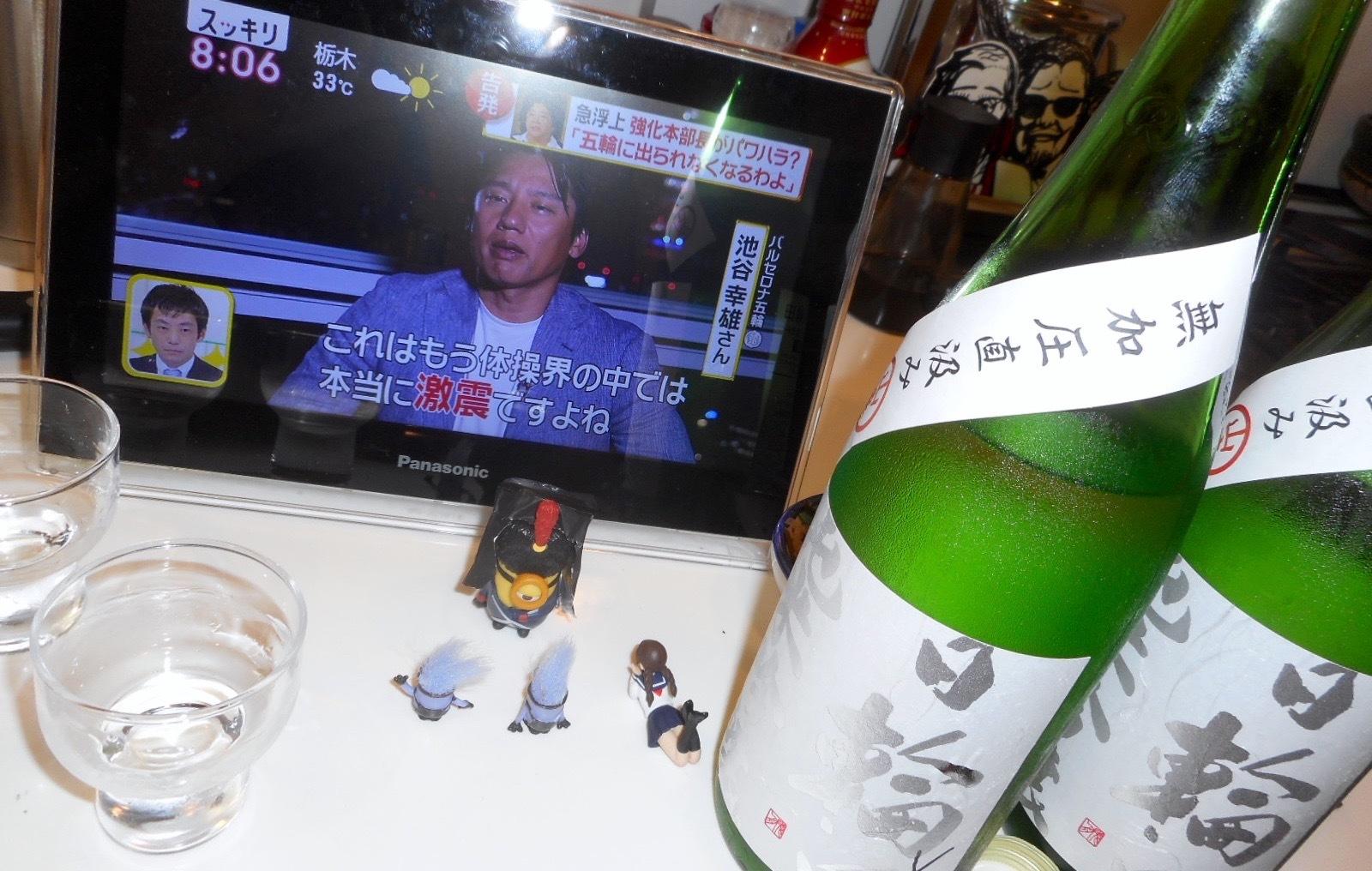 hiwata_mukaatsu28by2_8.jpg