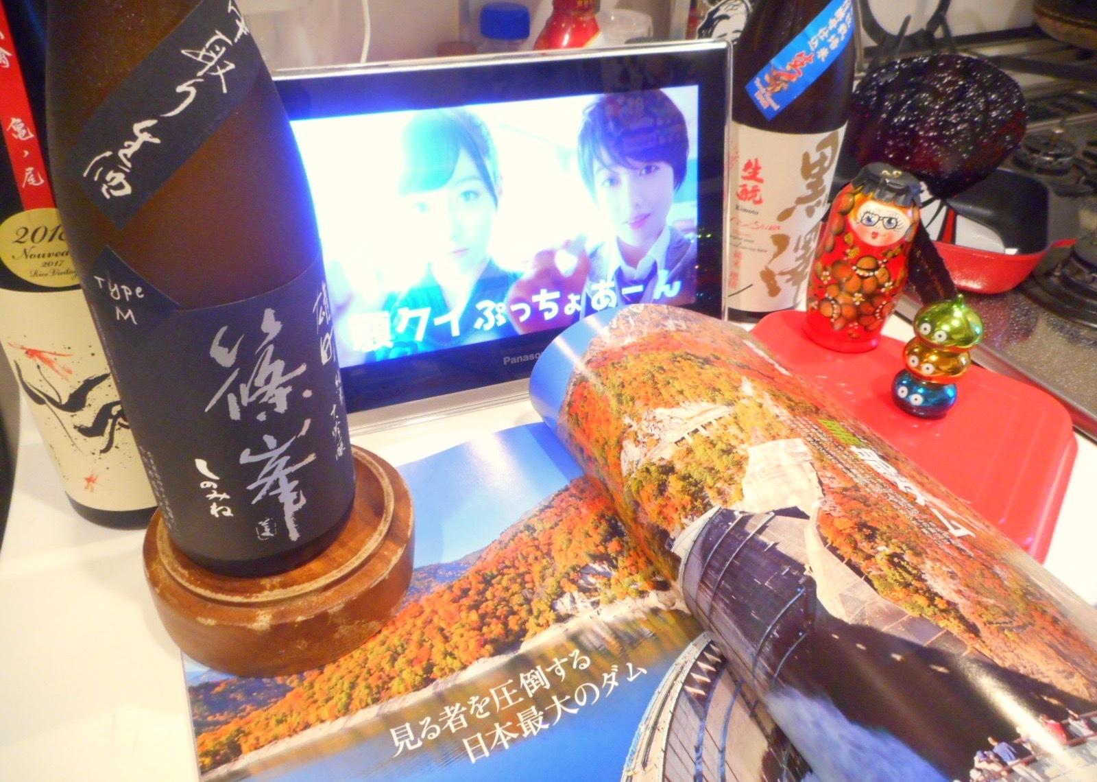 shinomine_type_m29by3_1.jpg