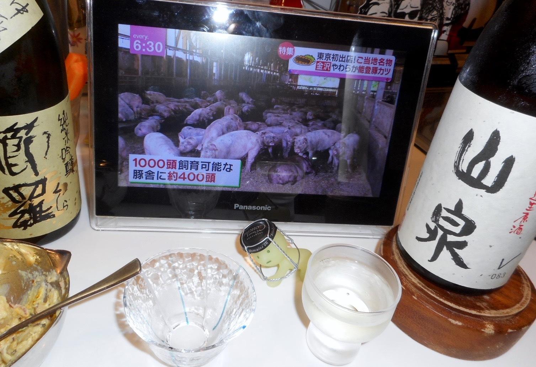 yamaizumi29by5.jpg