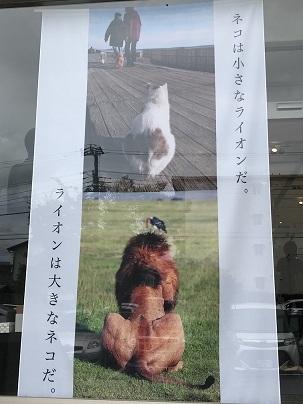 岩合さんの写真展&サイン会 002