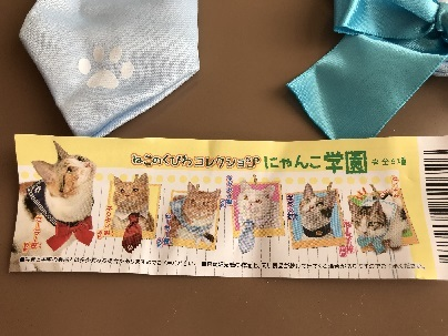 にゃんこ学園1