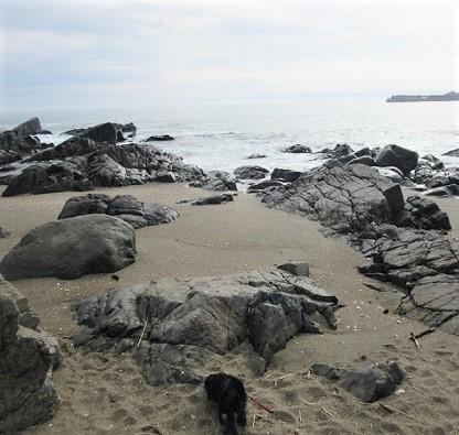 種差海岸180814⑪