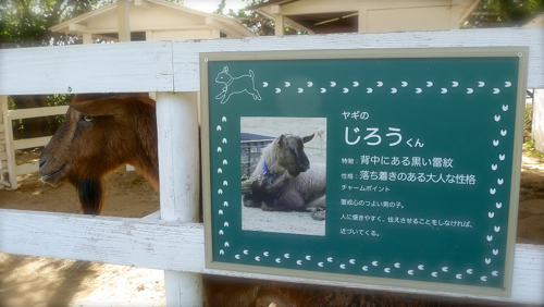 jirou180602-1