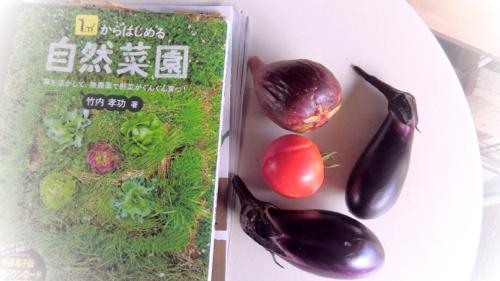 yasai180729-1