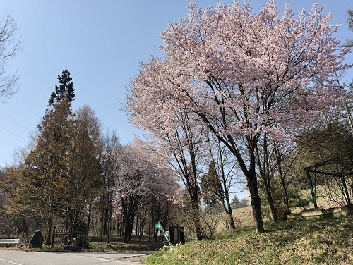 別荘201804
