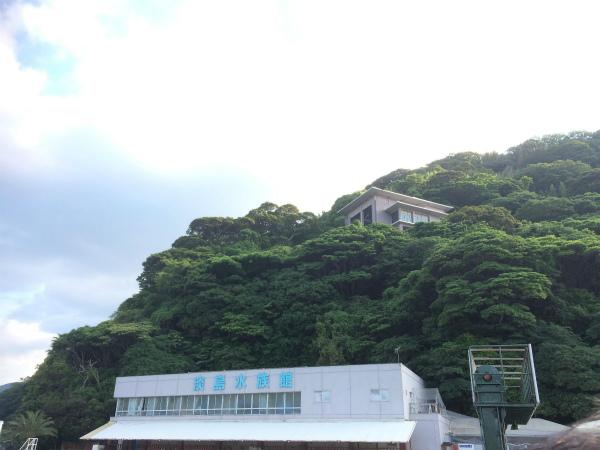沼津 ラブライブ 淡島マリンパーク