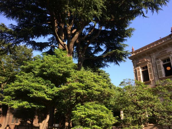 旧岩崎庭園