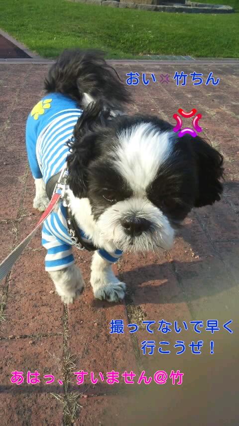 moblog_df66010a.jpg