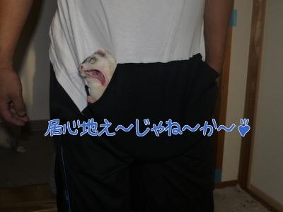 2015年9月23日 母ちゃん手作りのポケット (2)
