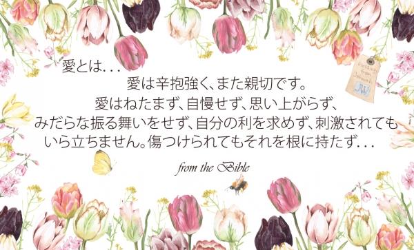 meishimessage4.jpg