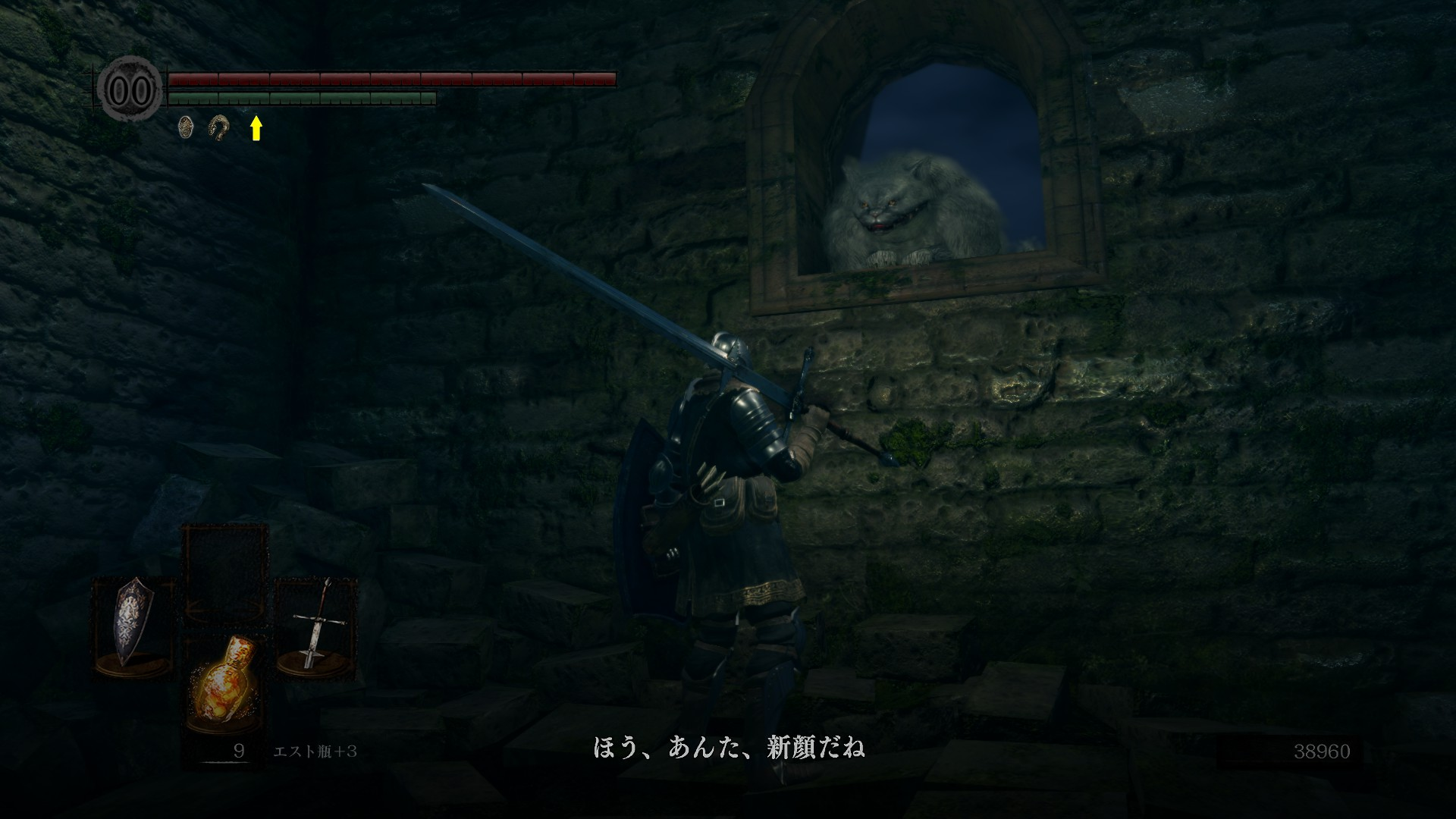 [PCゲーム]DARK SOULS REMASTERED2