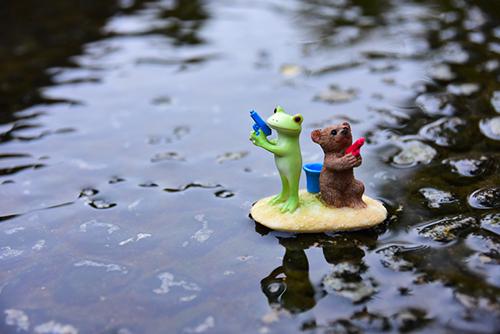 ツバキアキラが撮ったカエルのコポー。池の中で、水鉄砲対決を始めようとしている、コポタロウとクマくん。