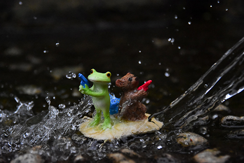 ツバキアキラが撮ったカエルのコポー。水鉄砲発射!なコポタロウとクマくん。