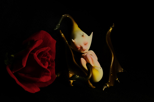 DOLLchateau・William AのRêve。とても素敵な異形の眠る胎児が、我が家にやって来ました。