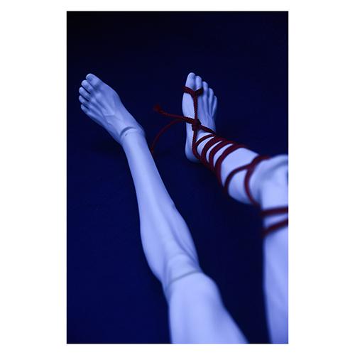 ツバキアキラが撮った球体関節人形緊縛写真集「紅 -kurenai-」のサンプル写真