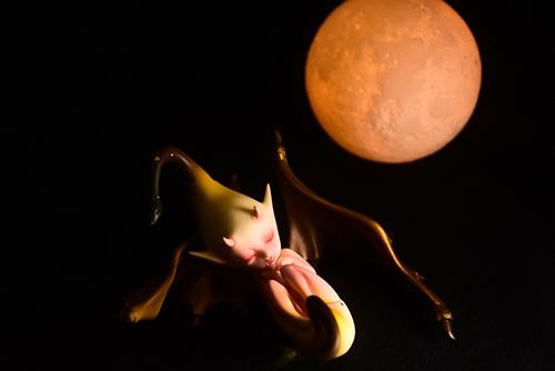 DOLLchateau・William AのRêve。月夜に眠る、異形の胎児。