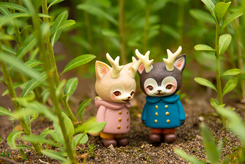 ツバキアキラが撮った、VAG・MORRIS、通称・つのねこ。茂みの中で、内緒話をしています。
