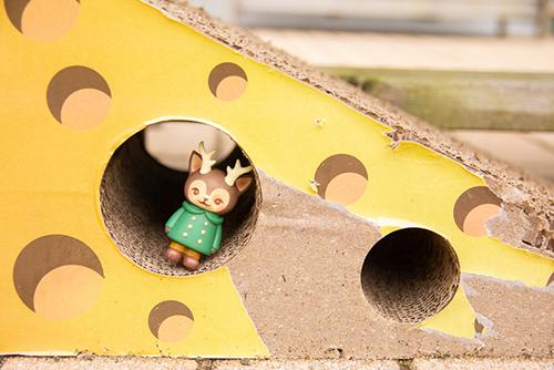 ツバキアキラが撮った、VAG・MORRIS、通称・つのねこ。穴があったから入ってみたけど、何の穴か考え中。