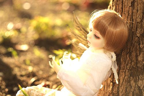 機械の翼を持つ少女、DOLLZONE・GillのAnne(アンヌ)。新しいお洋服を着て、秋の日差しの中、どこか中性的な雰囲気を漂わせていた。