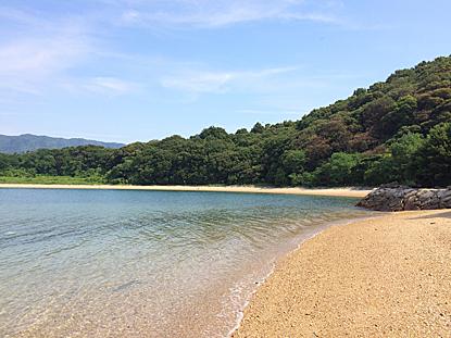 kozuta-01.jpg