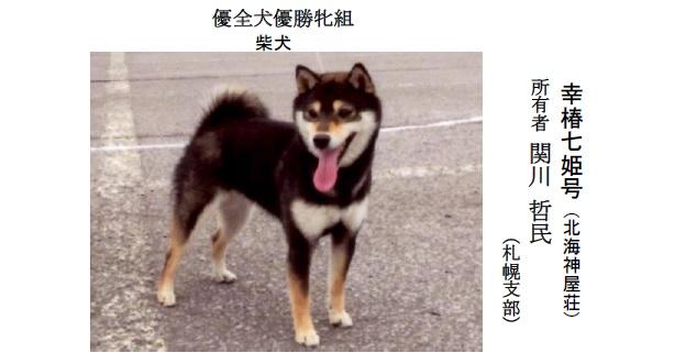 201808札幌-02優全犬牝