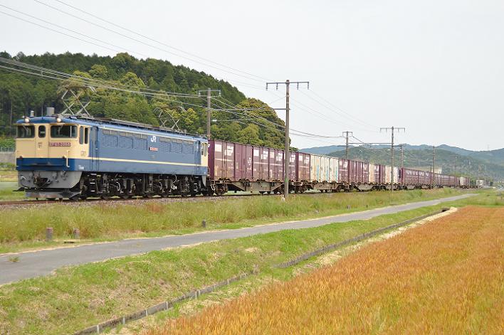 DSC_3605-3 180526 5087レ 垂井~関ヶ原-1