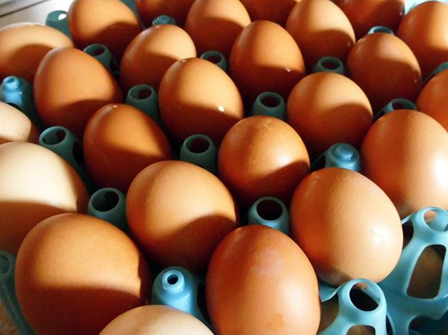 洗い終わった卵