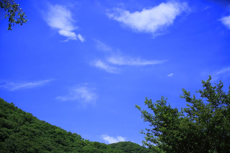 ブログ 猛暑の夏空.jpg
