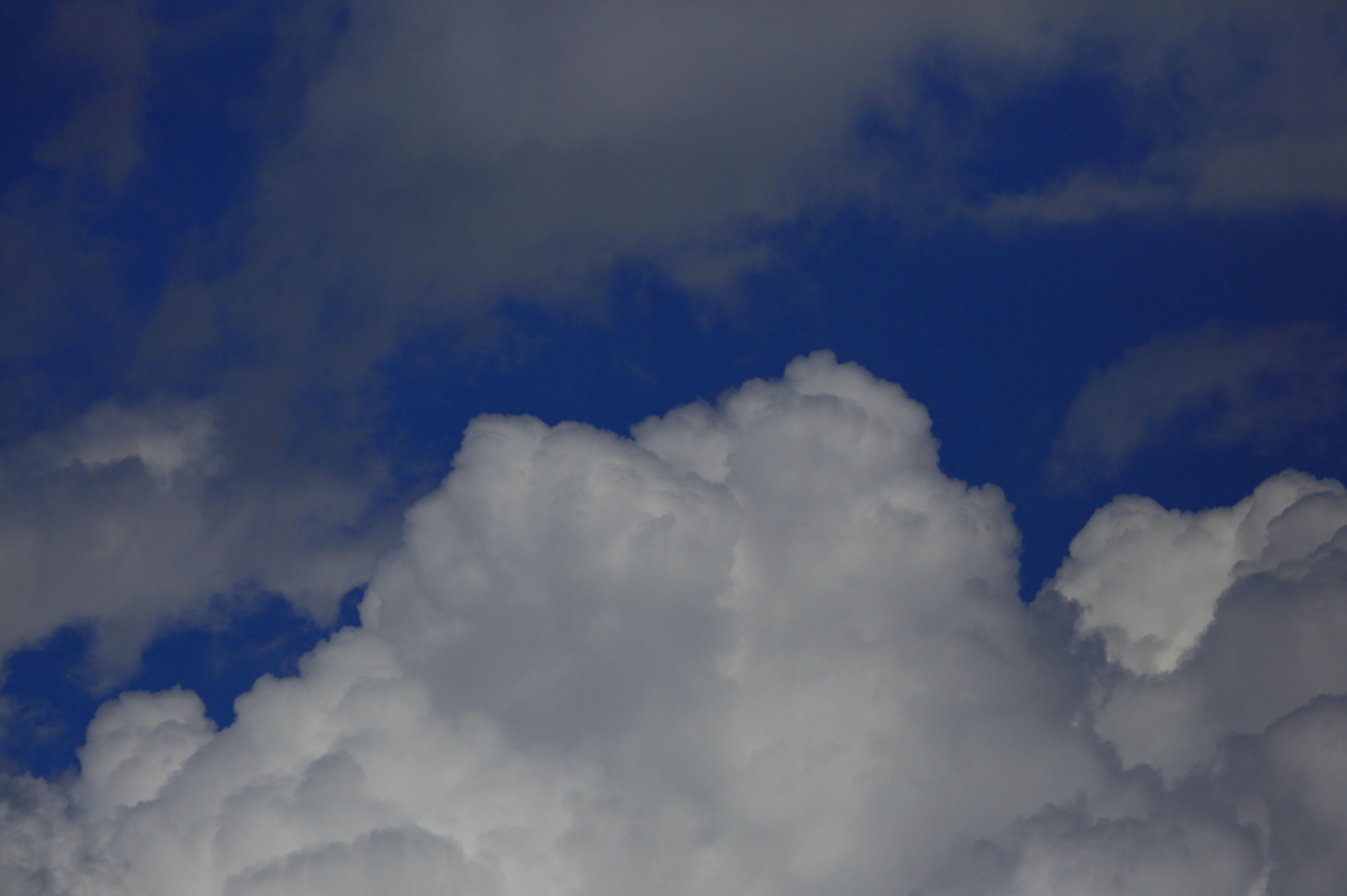 青空と白い雲 1.JPG