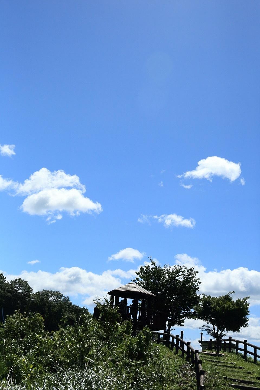ブログ 展望台のある空.jpg