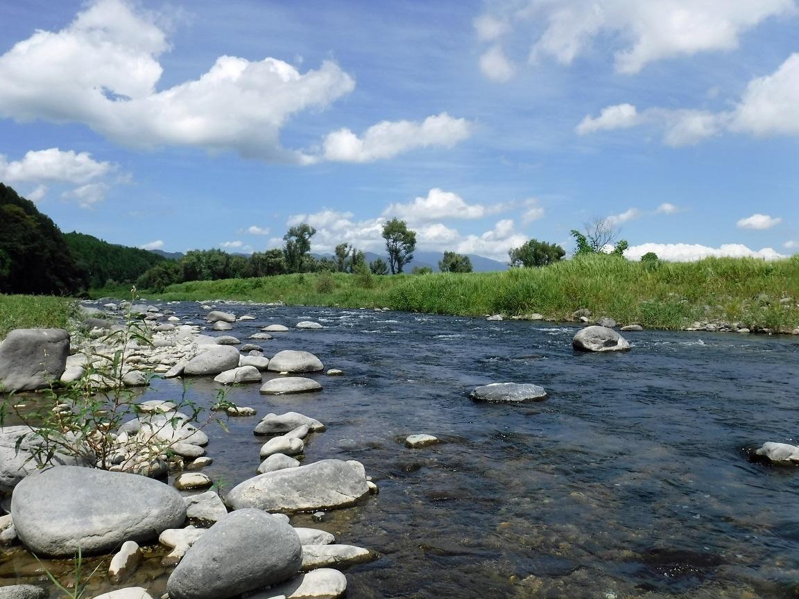 ブログ 夏の河 2.jpg