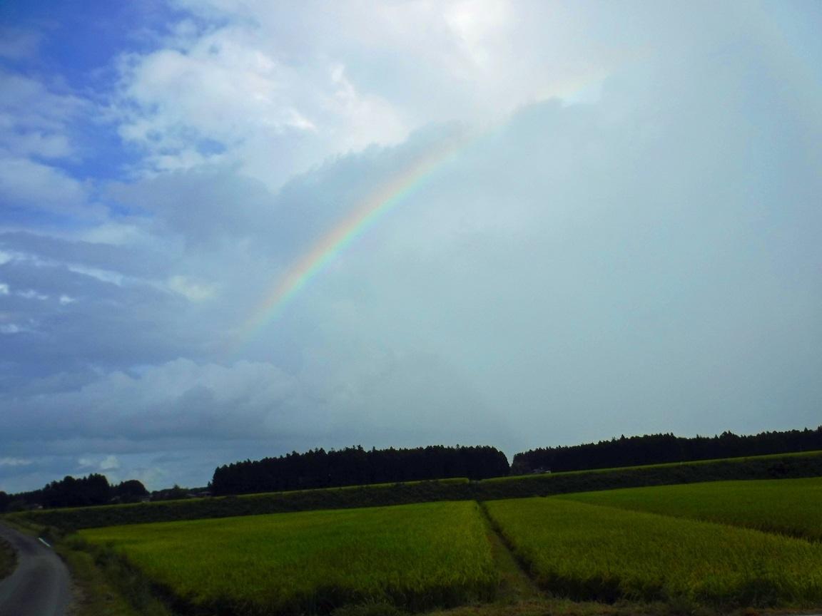 ブログ 虹が出た.jpg