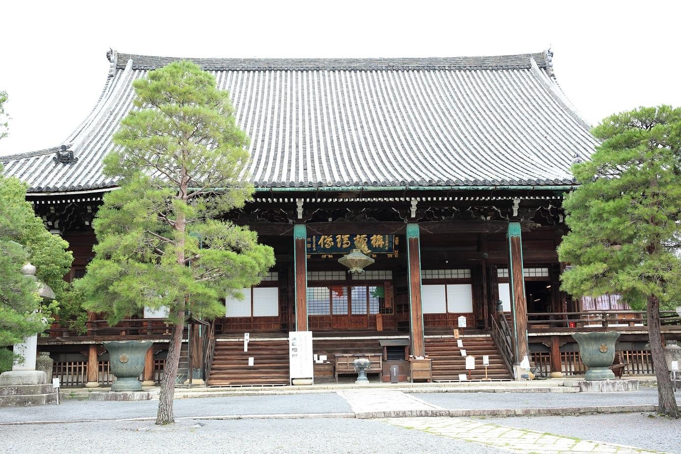 ブログ 清涼寺本堂 左の方の松は倒れてた.jpg