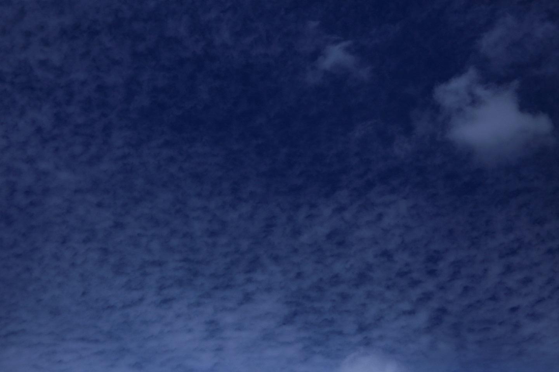 ブログ ただの秋の空.jpg