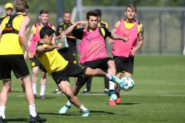 Dortmund Hoffenheim Guerreiro and Kagawa ready to play